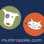BEST <b> Muttropolis </b> Coupon, Discount Code, May