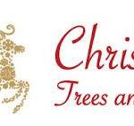 BEST <b> Christmas Trees And Lights </b> Coupon, Discount Code, 2020